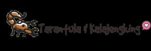Tarantula & Kalajengking Indonesia